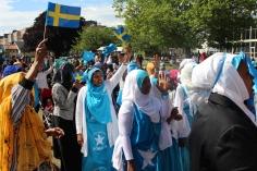 Somaliska nationaldagsfirandet i Folkets Park Malmö 26e juni 2014 2