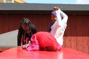 Somaliska Freds Kulturen Lund