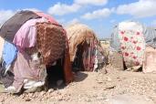 Gaboye Hargeisa Somaliska Freds Somali Peace