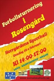 Fotbollsturnering i Rosengård