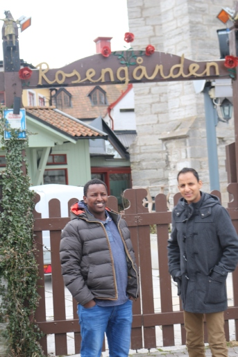 Somaliska Freds på Gotland - DBFs årsmöte 2015